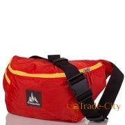 bdcd54d9e52a Купить спортивные сумки для тренировок: женские и мужские сумки в ...